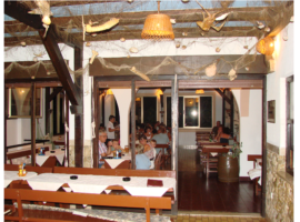 Tavern Ankora